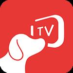 ����TV