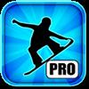 疯狂滑雪专业版