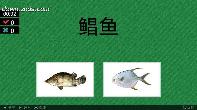 看图识鱼类TV版
