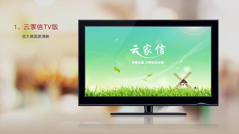 云家信TVTV版