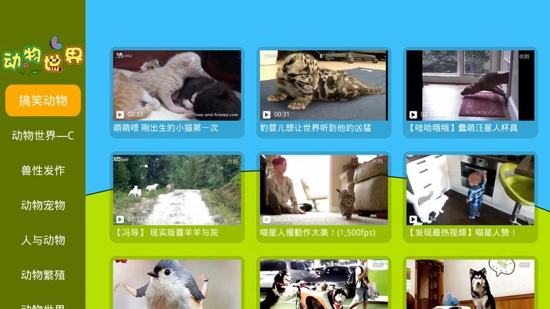 动物世界TV版