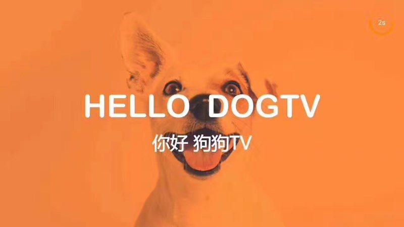 狗狗TVTV版