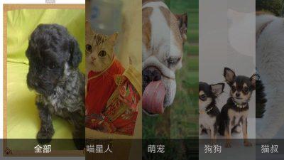 萌宠乐园_萌宠乐园_萌宠乐园TV版APK下载_电视版 for 安卓TV_ZNDS软件