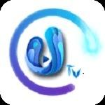 IPTV电视芯