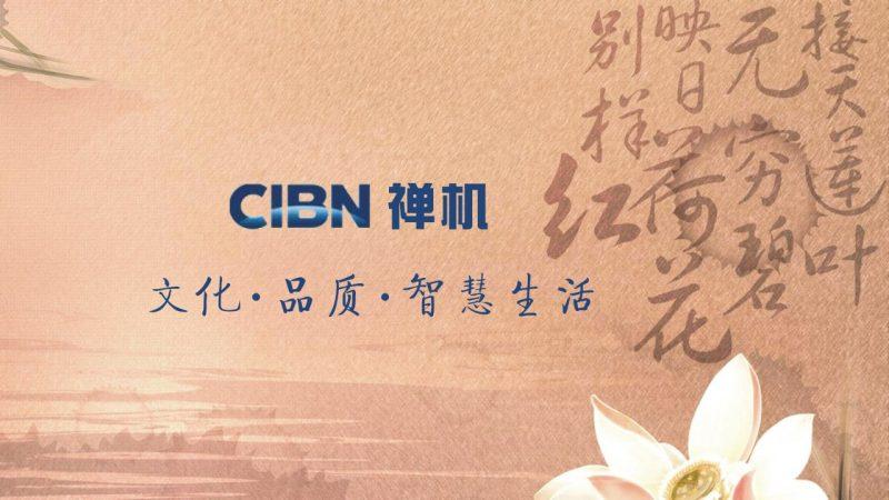 CIBN禅机TV版